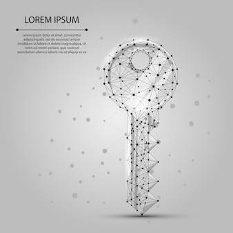 Polygonal wireframe mesh key from dots and lines
