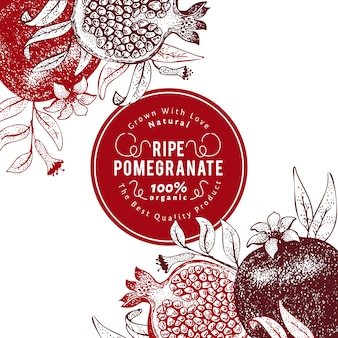 Гранатовый фруктовый дизайн шаблона. ручной обращается векторные иллюстрации фруктов. гравировка стиль ретро ботанический фон.