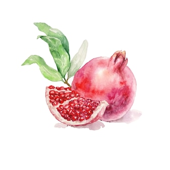 Pomegranate and a half