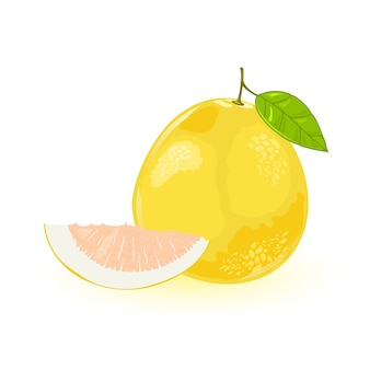 Pomelo or shaddock whole with green leaf and segment of it