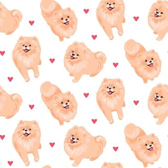 Pomeranian spitz puppy seamless pattern