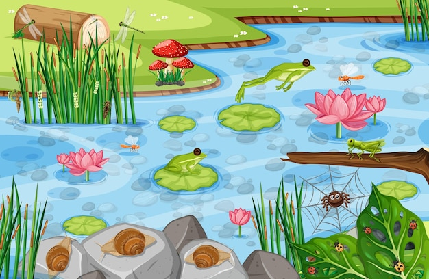 Pond scene with many green frogs