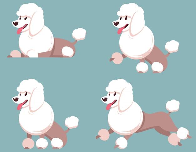 다른 포즈의 푸들. 만화 스타일의 아름 다운 개입니다.