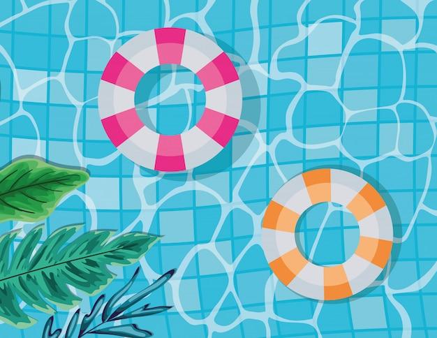 Бассейн с листьями и поплавками дизайн вектор вид сверху