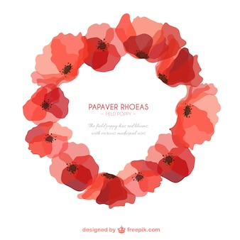 Poppies frame