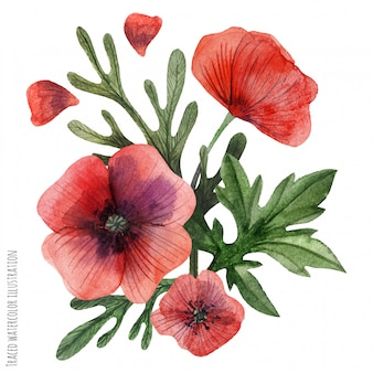 Poppies hand painted watercolor boutonniere
