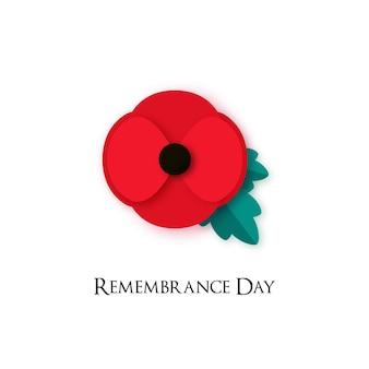 Poppy flower illustration for remembrance day