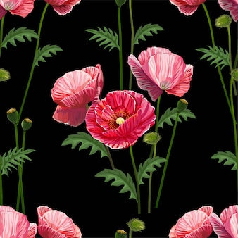 Poppy flower seamless pattern