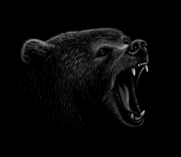 Portrait of a brown bear head on a black background. grin of a bear.  illustration