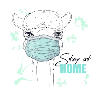 Portrait of cute alpaca in medical mask