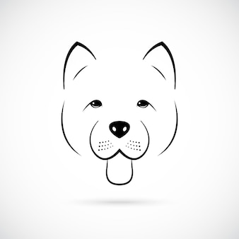 Portrait of cute chowchow isolated on white background