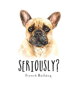 Portrait french bulldog for printing