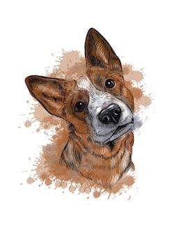 水彩犬のイラストのスプラッシュと犬の手描きスケッチの肖像画
