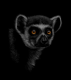 黒の背景にワオキツネザルの頭の肖像画。図