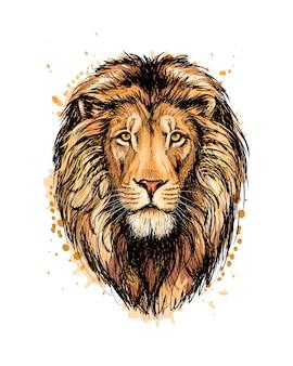 Портрет головы льва из всплеск акварели, рисованный эскиз. векторная иллюстрация красок