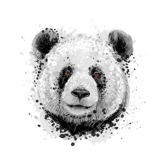 Портрет медведя панды из всплеск акварели, рисованный эскиз. векторная иллюстрация красок