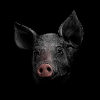 黒の背景に豚の頭の肖像画。中国の干支の豚の年。図