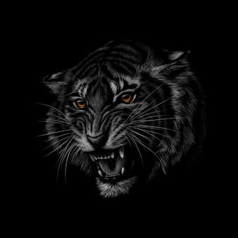 검정색 배경에 호랑이 머리의 초상화. 삽화