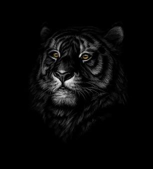 黒の背景に虎の頭の肖像画。図