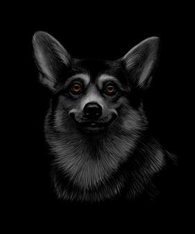 黒の背景にウェールズのコーギー頭の肖像画。図