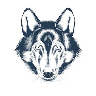 オオカミの頭の肖像画。オオカミの顔の描画スケッチ。リアルな手描きのベクトル図