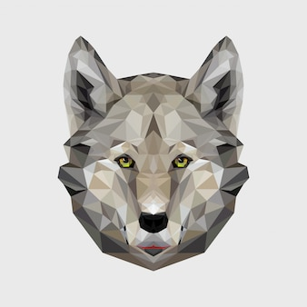 Portrait of wolf polygonal. triangle dog illustration for use as a print on t-shirt and poster. wolf animal head geometric low poly design. wild dangerous animal.