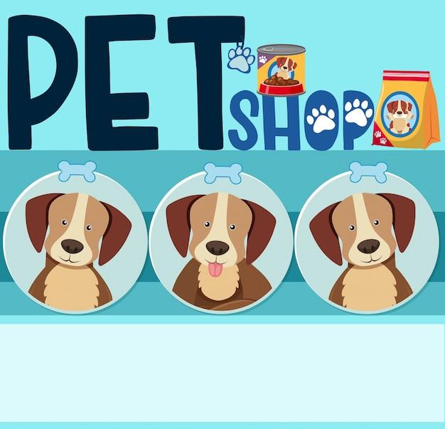 Дизайн плаката с симпатичными собаками