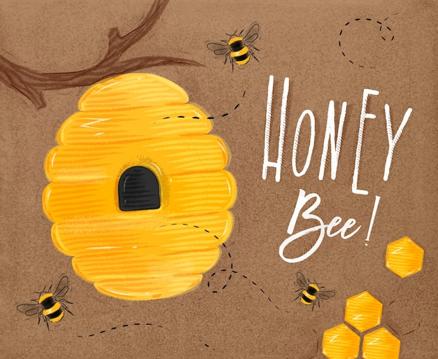 Poster illustrated bee hive, honeycombs lettering honey bee drawing on craft
