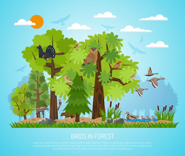 森の中の鳥のポスター