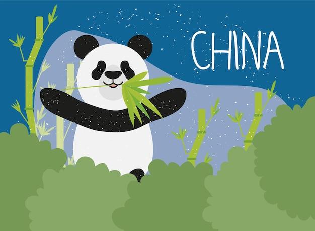 팬더와 중국의 포스터