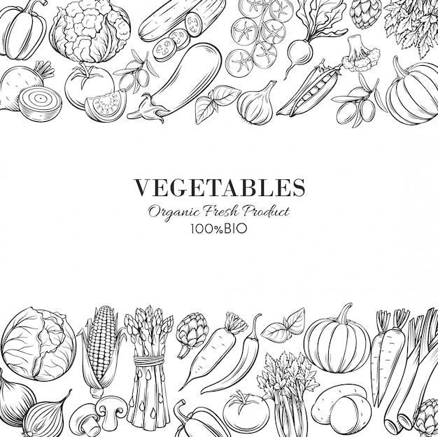 手描きの野菜とポスターテンプレートの枠線