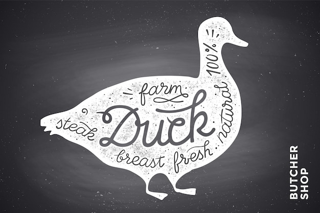 Poster with red duck silhouette. lettering