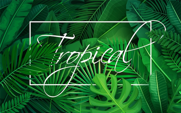 Плакат с тропическими листьями