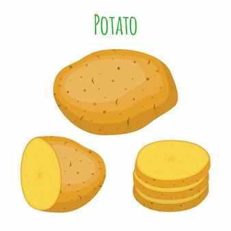 ポテトセット、野菜。自然食品。漫画のフラットスタイル