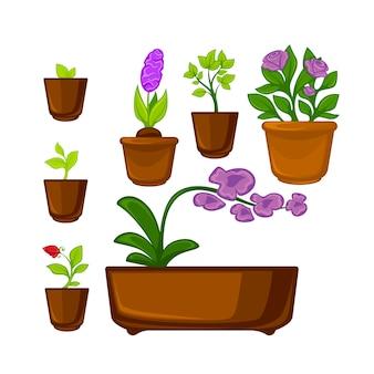 Горшки растения с цветами и листьями установлены.
