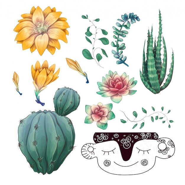 화분에 심은 선인장과 다육 식물 배지 컬렉션 집합.
