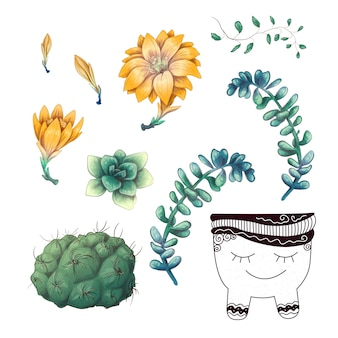 Potted cacti and succulents plants badge collection set.