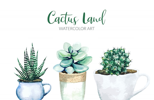 Potted cactus plants, hand drawn watercolor illustration