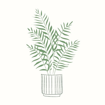 鉢植えの植物ベクトル観葉植物ゴールデンサトウキビヤシ