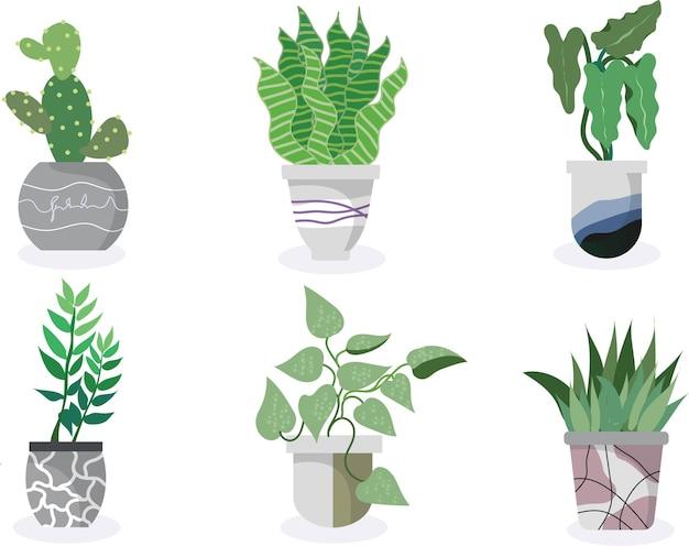 화분에 심은 식물 컬렉션 다육 식물과 집 식물 손으로 그린 벡터 아트