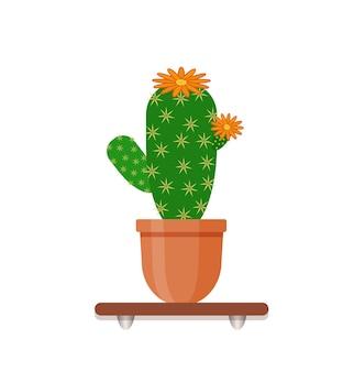 Кактус в горшке с цветами на полке. комнатное растение в горшке. внутренний садовый декор.