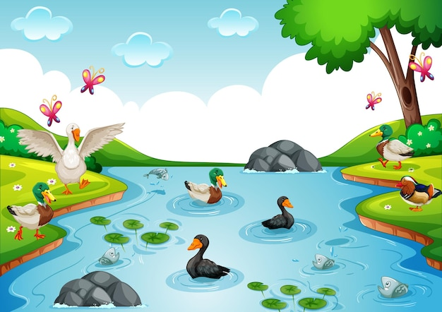Poultry group in the river in nature scene