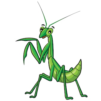 Praying mantis cartoon
