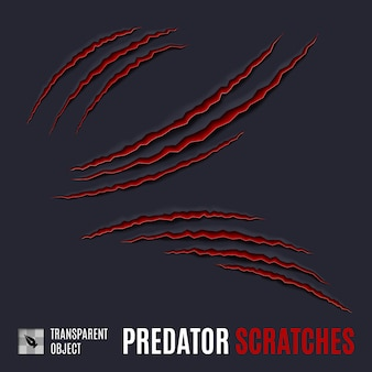 Predator scratches