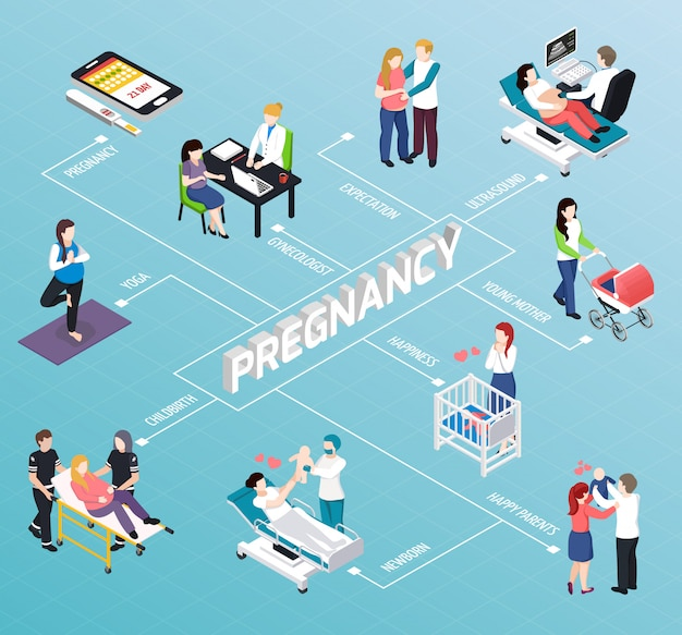Pregnancy isometric flowchart