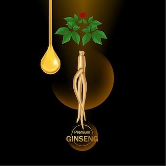 Premium ginseng vector illustration