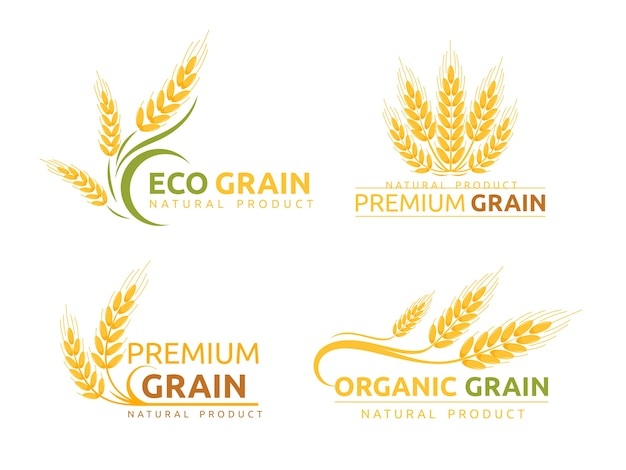 Premium grain flat logotype designs set. organic cereal crops, natural product advertising. ripe wheat ears cartoon illustrations with typography. eco farm, bakery shop logo concepts pack.