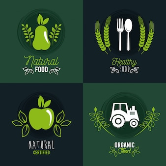 Premium and healthy food banner set