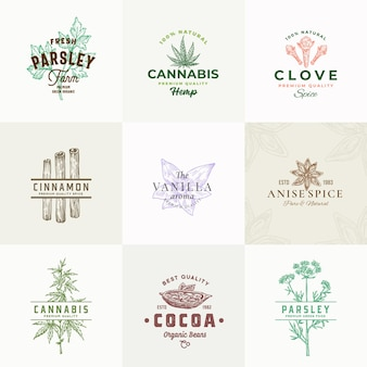 Premium quality herbs and spices signs or logo template