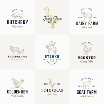 Premium quality retro cattle and poultry signs or logo templates set. hand drawn vintage domestic animals and birds sketches with classy typography, pig, cow, chicken, etc.